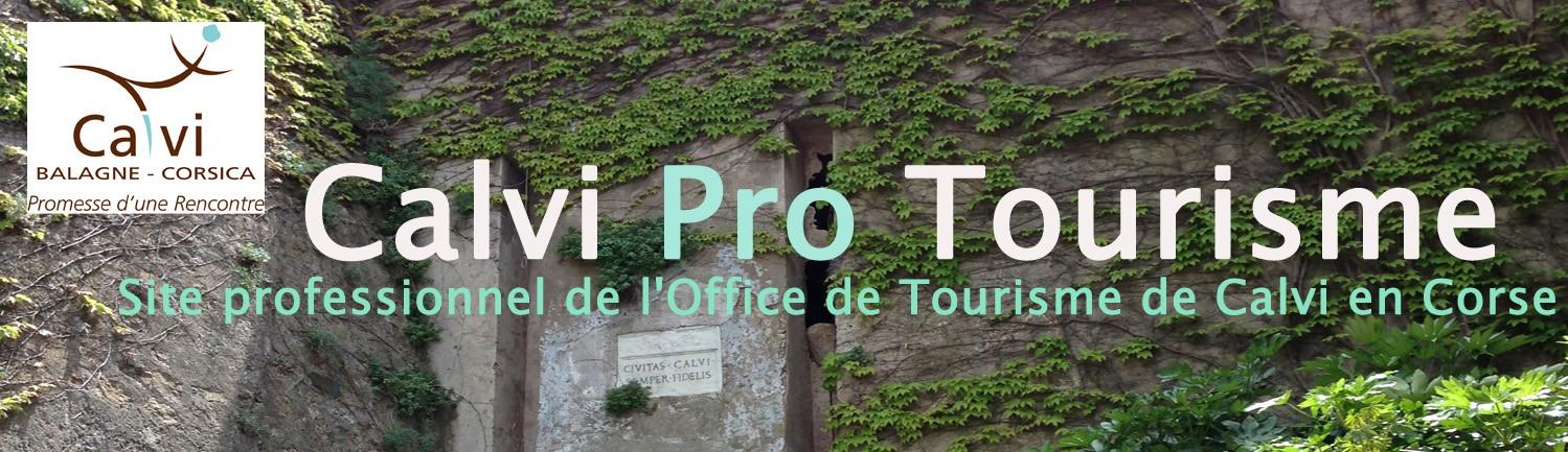 Calvi pro tourisme site professionnel de l 39 office de tourisme intercommunal calvi balagne en corse - Office de tourisme porto corse ...